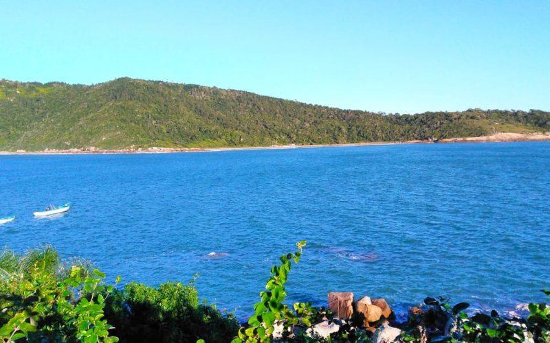 Ilha em santa catarina para venda